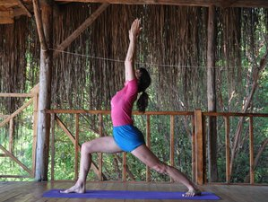 3 Days Iyengar Yoga Retreat UK