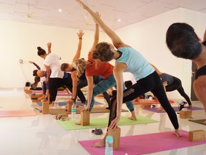 12 Day 100-Hour Multi-Style Yoga Teacher Training in Dharamshala