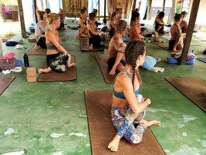 29 Day 300-Hour Holistic Yoga Teacher Training in Goa