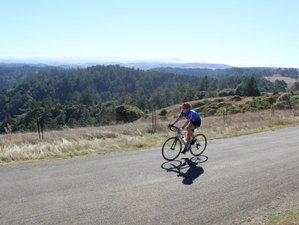 4 Days Classic Sonoma Bike Tour in California, USA