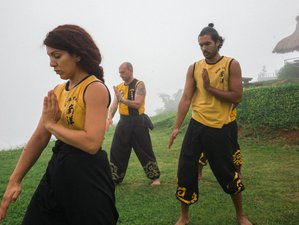 1 Year Self-Paced Internal Kung Fu and Qigong Online Training