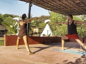 9 jours en stage de yoga et atelier d'art YogaPlus à Gokarna, Inde