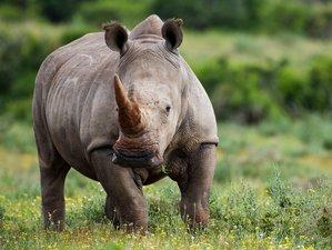 3 Days Short Getaway All-Inclusive Safari in Tanzania