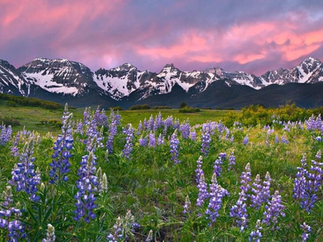 5 Days Ladies' Telluride Hiking, Yoga, and SUP Yoga Retreat in Colorado, USA