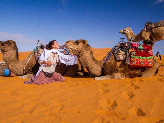 kissing a camel