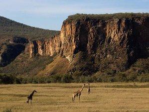 5 Days Big Five Safari Tour in Kenya