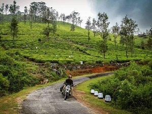 11 Days Ceylon Circuit Tour in Sri Lanka