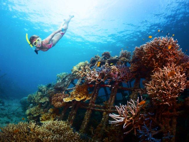 8 jours en stage de yoga acrobatique et postures d'équilibre sur les mains à Bali, Indonésie