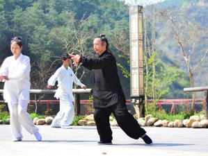 17 Days Tai Chi 28 Martial Arts Training in Wudangshan, China