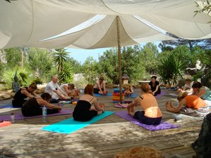 20 Days 200-Hour Vinyasa Yoga Teacher Training in Ibiza