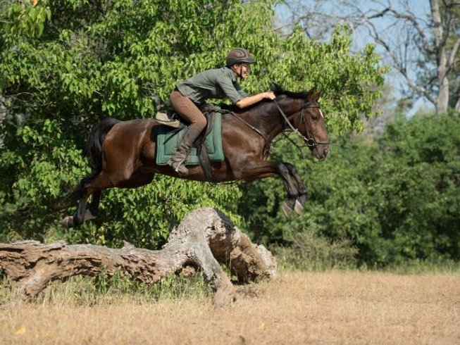 8 Days Horseback Safari in Botswana