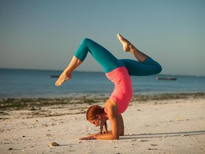 12 jours en stage de yoga et safari en Tanzanie, Afrique