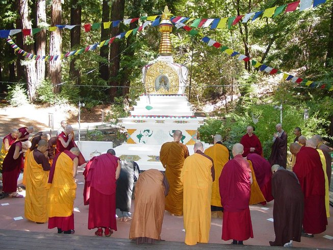 5 Days Bodhi Yoga & Meditation in North California