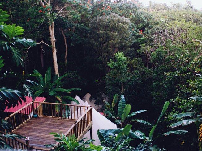 5 días increíble retiro de yoga y todo lo demás en Puerto Rico