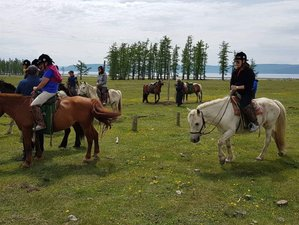 8 Day Trail Ride Central Mongolia Horseback Riding in Mongolia