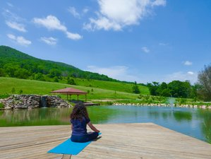 5 Day Yoga Detox and Wellness Holiday in Bland, Appalachian Mountains, Virginia