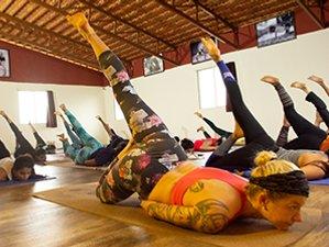 28 Days 250 Hours Ashtanga Yoga Teacher Training in India