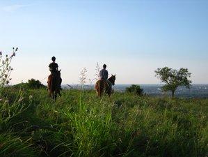 4 Days Fruska Gora Horse Riding Holiday in Vojvodina, Serbia