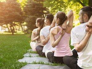 5 jours en stage de yoga, randonnées et assise silencieuse en forêt à La Salvetat, Haut Languedoc