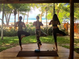 7 Days Beachfront Yoga & Surf in Costa Rica