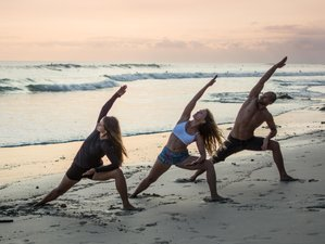 25 Days 200-Hour Progressive Yoga Teacher Training in Santa Teresa, Costa Rica