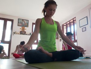 14 Day Detox and Yoga Therapy in Chalong, Phuket