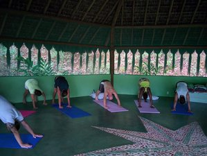 9 Day Spiritual Retreat with Ayahuasca, Meditation and Yoga in Itacaré, Bahia