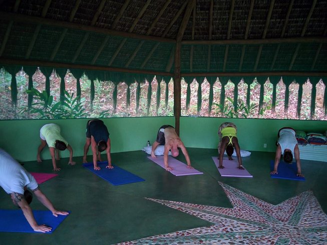9 Days Meditation, Ayahuasca, and Yoga Retreat Brazil