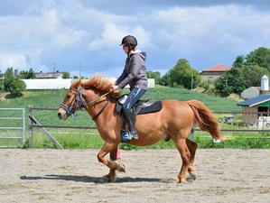 "2 Day ""Cool and Gourmet"" Horse Riding Holiday in Lupiac, Occitanie"