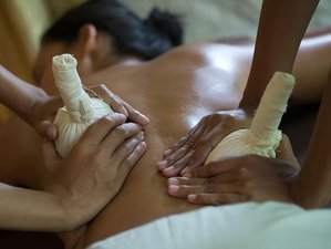 22 Day Wellness Ayurveda, Meditation and Yoga Holiday Ubud, Bali