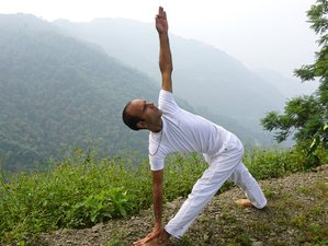 28 Days 200-Hour Beginner Level Hatha Yoga Teacher Training in Rishikesh, India