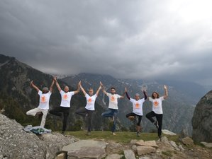 25 Days 200-hour Multi Style Yoga Teacher Training in Dharamshala, India