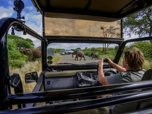 3 Days Classic Southern Kruger Safari