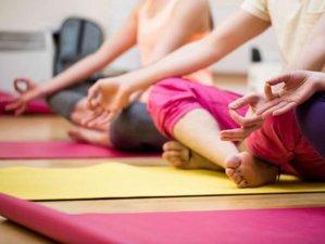 30 Day Intensive Citta Yogam Course: Diploma in Yoga Teacher Training in Tamil Nadu