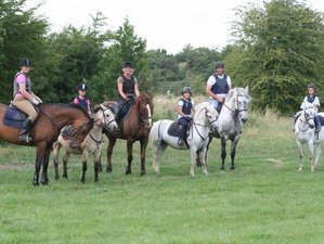 3 Day Short Weekend Horse Riding Break in Tullamore, County Offaly