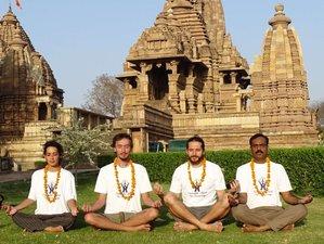 25 Day 200-Hour Online Intensive Multi Style Yoga Teacher Training