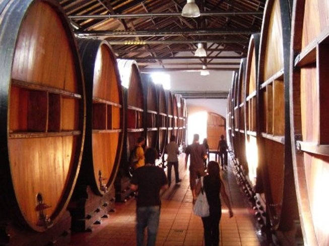 2 Weeks Buenos Aires Wine Tour in Argentina
