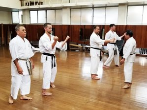 7 Days Learn Traditional Karate for All Levels in Its Birthplace, Beatiful Okinawa, Japan
