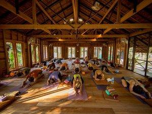 29 Day 200-Hour Yoga Teacher Training in Koh Yao Noi, Phang Nga Bay