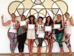 15 jours de formation de professeur de yoga certifiée en Basse Californie du Sud, Mexique