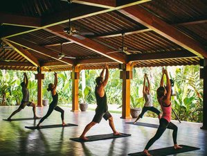 9 Days To Ignite Your Passion and Unleash Your True Potential Yoga Retreat in Bali, Indonesia