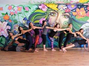 29 Day 200-Hour Hatha Yoga Teacher Training in the City of Eternal Spring, Medellín