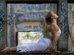 7 Day Travel, Vinyasa Yoga and Kundalini Meditation Retreat in Lovina, Bali