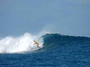 12 Days Daring Surf Trip in Northern Male, Maldives