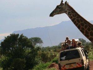 12 Days Best of Wildlife  Budget Safari in Kenya and Tanzania
