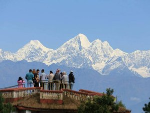 8 Day Sightseeing and Safari Tour in Nepal