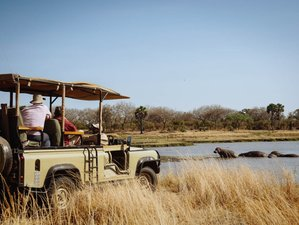 3 Days Typical Safari From Butembo Lodge in Selous Game Reserve, Tanzania