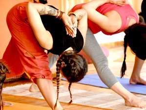 29 Day 300-Hour Yoga Teacher Training in Goa