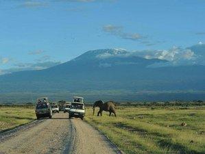12 Days Semi Luxury Safari Tour in Kenya and Tanzania