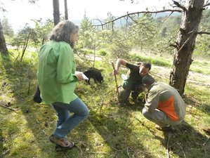 4 Day Truffle Hunting Italian Culinary Vacations in Tuscany, Province of Arezzo